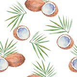 无缝的样式用椰子,绘在水彩 传染媒介b 库存照片