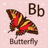 英国信件B,蝴蝶 库存图片