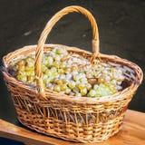 B2asket świezi winogrona 2 Obrazy Royalty Free