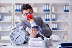 Błazenu biznesmen gniewny w biurze z megafonem Obraz Stock