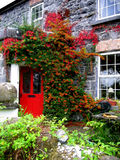 B&B in Athenry, Ireland. Beautiful stone bed and breakfast located in Athenry, Ireland with a charming red door Stock Images