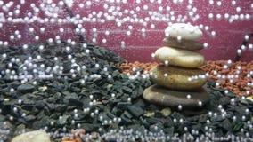 Bąbla akwarium Obrazy Stock