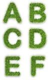 A, b, c, d, e, f fatta di erba verde immagini stock