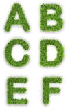 A,b,c,d,e,f made of green grass Stock Images