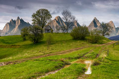 Bûcher parmi des arbres sur une colline par la route dans haut Tatras Images libres de droits
