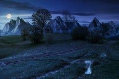Bûcher parmi des arbres sur une colline par la route dans haut Tatras au nig Image libre de droits