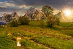 Bûcher parmi des arbres sur une colline par la route dans haut Tatras au soleil Photos libres de droits