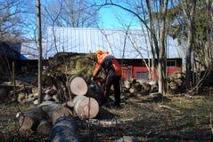 Bûcheron à un arbre tombé par vent Images libres de droits