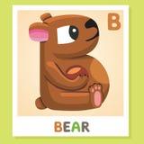 B est pour l'ours Lettre B Ours, illustration mignonne blanc animal de vecteur de fonds d'image d'alphabet Images libres de droits