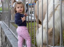 B?b? Fille Poney regarder mignon zoo photo libre de droits