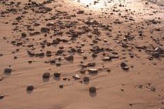 <b>Het strand van het zand</b> Stock Afbeelding