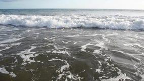 B??kit macha surfing na ocean tropikalnej pla?y zdjęcie wideo