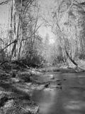 b lil rzeka w Obrazy Royalty Free