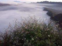 B29 Lumajang. Morning in B29 Lumajang Hill. This photo was taken in Lumajang, Indonesia stock image