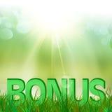 Bônus do verão na grama verde Imagens de Stock