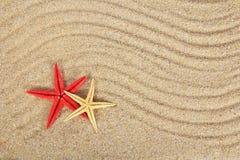 Błogie rozgwiazdy na piasku Fotografia Stock