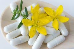 Błonia St John wort naturalny antidepressant - hypericum perforatum - Zdjęcie Royalty Free