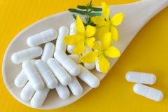 Błonia St John wort naturalny antidepressant - hypericum perforatum - Obrazy Stock