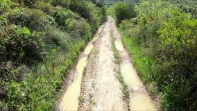B?otnista droga w wsi zbiory