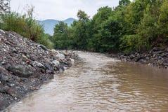 Błotnista rzeka przy lato sezonem Fotografia Royalty Free