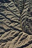 Błoto z reens na bankach rzeczny usk, Newport, gwent, Walia, UK zdjęcia stock
