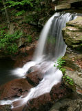 B. Reynolds Falls. Rickett's Glen State Park, PA royalty free stock photo