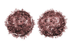 B- and T-lymphocytes. Immune cells. Isolated on white background. 3D illustration Stock Photography
