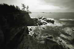 B u. W von der Nordwestküstenlinie Lizenzfreie Stockfotografie