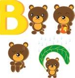 B-urso Fotografia de Stock Royalty Free