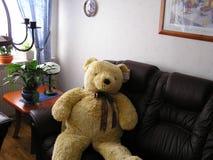 <b>Urso da peluche</b> Imagens de Stock
