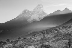 B&W Ama Dablam mountain peaks morning fog, Tengboche village, Ne Stock Image