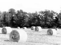 B&W beeld van ronde hooibalen op landbouwbedrijfgebied in NYS Stock Afbeelding