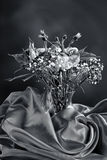 B&W of carnation bouquet. Royalty Free Stock Images