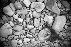 B&W de rotsen van de rivierbank royalty-vrije stock fotografie