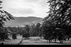 B&W del paisaje de la montaña con los árboles y las nubes fotografía de archivo libre de regalías