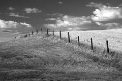 B&W of farm field. Stock Photos