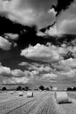 B-W landscape. Beautiful landscape with clouds and straw bales in black and white photo Royalty Free Stock Photos
