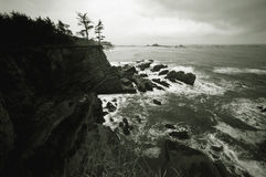 B & W from Northwest Coastline Royalty Free Stock Photography