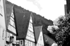 A B&W photo of geraniums in a window box in a village on the Rhine. stock photography