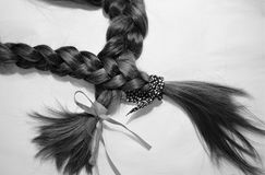 Sister`s braids 2 royalty free stock images