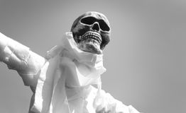 Free B & W Skeleton Scarecrow Royalty Free Stock Photos - 6348708