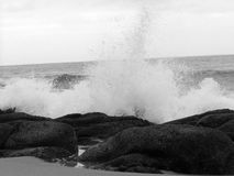 B&W Waves and Rocks royalty free stock images