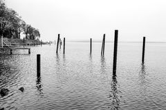 B&W of wood posts in a lake. Royalty Free Stock Photos