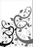 B y fondo floral de W stock de ilustración