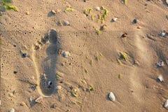 B?yszcz?cy, doskonali? foots odcisk w piasku na pla?y w lecie fotografia stock