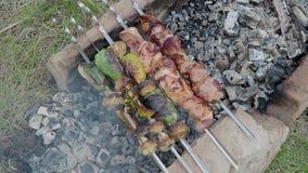 b zakazuje bbq kurczaka węgla kulinarnych obiadowych grilla kebab mięsa pieczarki pieprzy q skewers węglowy grill kurczaków mięśn zbiory