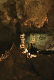 B24 Carlsbad Caverns. Side lighting captures a stalagmite Stock Photography