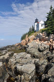 Baß-Hafen-Leuchtturm, Nationalpark des Acadia Stockfotos