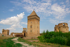BaÄ伏伊伏丁那的塞尔维亚堡垒 免版税图库摄影