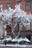 Baía da parte traseira de Boston no inverno fotografia de stock royalty free